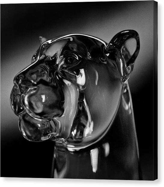 Washington State University Canvas Print - Crystal Cougar Head IIi by David Patterson