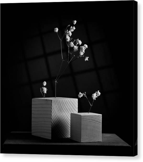 Cubicle Flowers - Gray Variations Canvas Print by Ovidiu Bastea