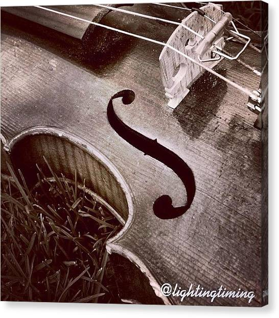 Violins Canvas Print - Culture & Texture #violin #classical by Lighting and Timing