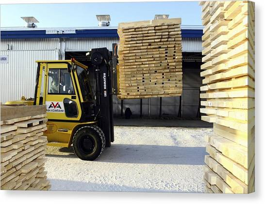 Forklifts Canvas Print - Cut Timber Being Stacked For Drying by Ria Novosti