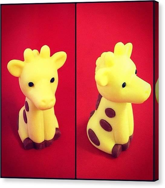 Giraffes Canvas Print - Cute As! by Vincy S