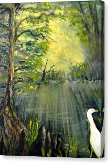 Cypress Morning Canvas Print