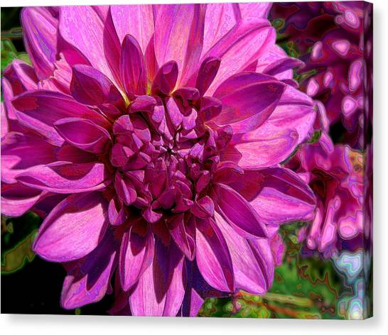 Dahlia Describes The Color Pink Canvas Print