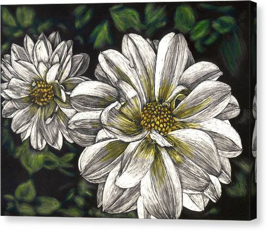 Dahlias Canvas Print by Robert Goudreau