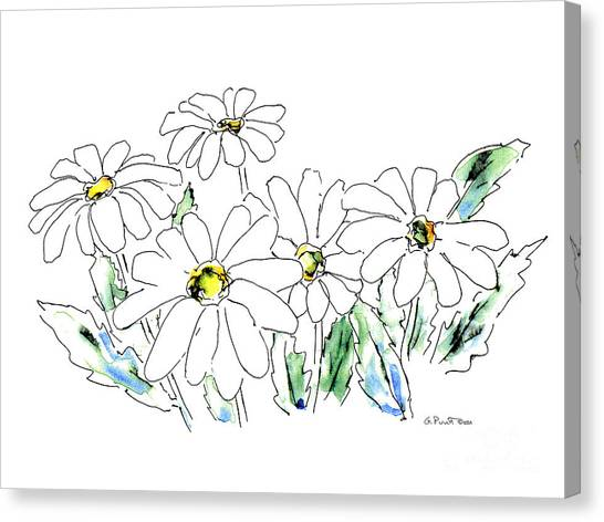 Watercolor Rose Canvas Print - Daisy Watercolor Drawing 2 by Gordon Punt