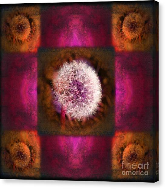 Dandelion In Flame Canvas Print by Laura Iverson