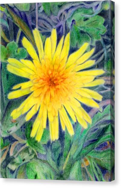 Dandelion Canvas Print by Linda Pope