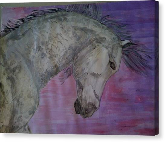 Dapples Canvas Print