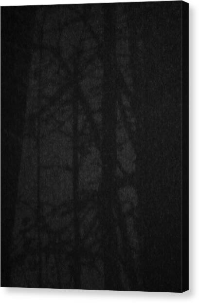 Dark Shadows Canvas Print