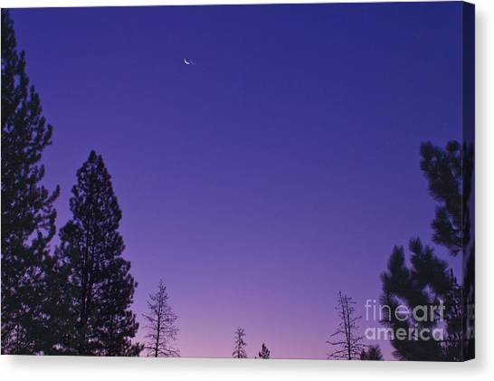 Dawn From My Window Canvas Print