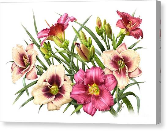 Daylily Bouquet - Rubies Canvas Print