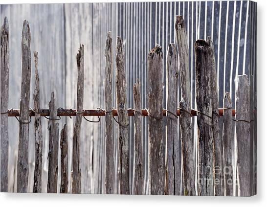 De-fence Canvas Print