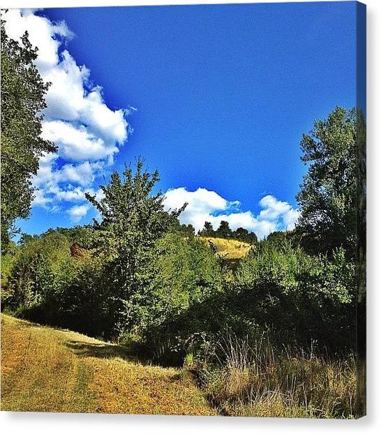 Forest Paths Canvas Print - De Retour D'une Balade Dans Les by Val Lao