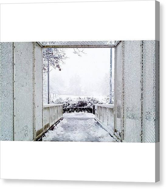 Snowflakes Canvas Print - December 19, 2012 [5 Of 6] // #winter by Mark Rabe