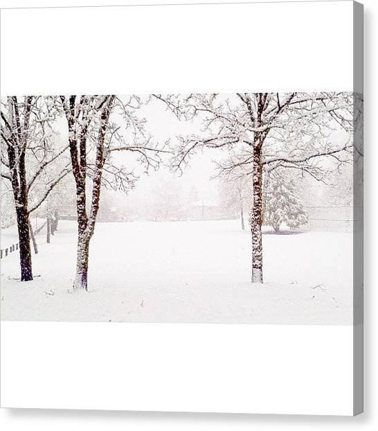 Snowflakes Canvas Print - December 19, 2012 [6 Of 6] // #winter by Mark Rabe