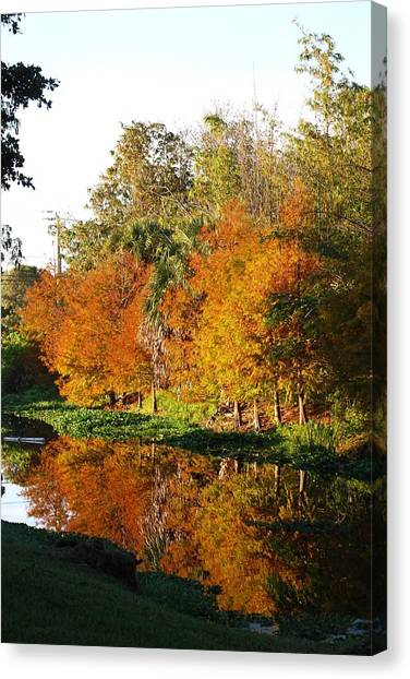 December Morn On Deerfield Creek Canvas Print