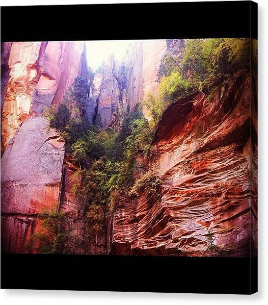 Red Rock Canvas Print - Deep In Oak Creek Canyon Arizona by Cheryl Matochik
