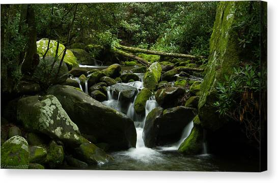 Deep In The Forest Lies A Waterfall   Canvas Print by Glenn Lawrence