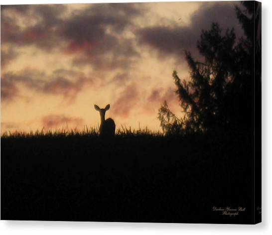 Deer On Hill Canvas Print by Darlene Bell
