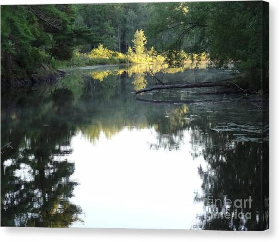 Deer River In Early Sun Canvas Print