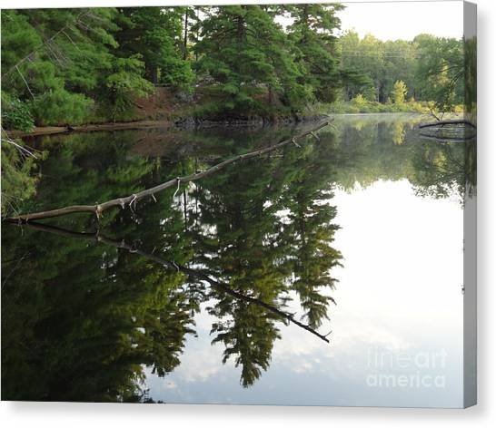 Deer River Reflection Canvas Print