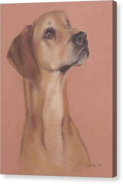Demo The Hero Dog Canvas Print