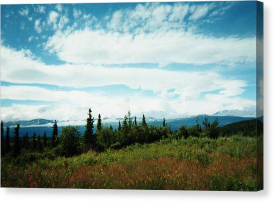 Denali Sleeps Behind Clouds Canvas Print