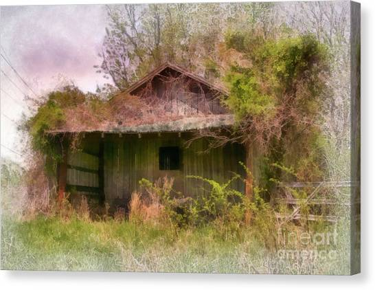 Derelict Shed Canvas Print by Susan Isakson