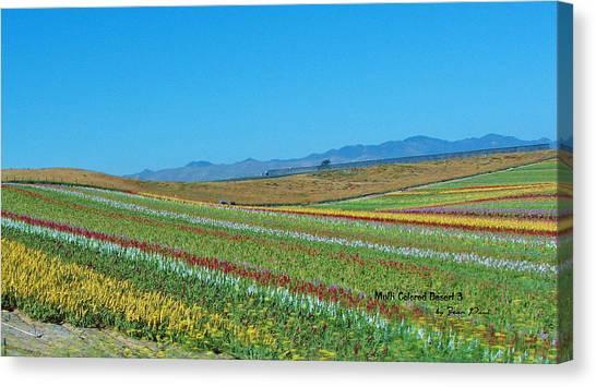 Desert Colors 3 Canvas Print by Jean Paul LeBlanc