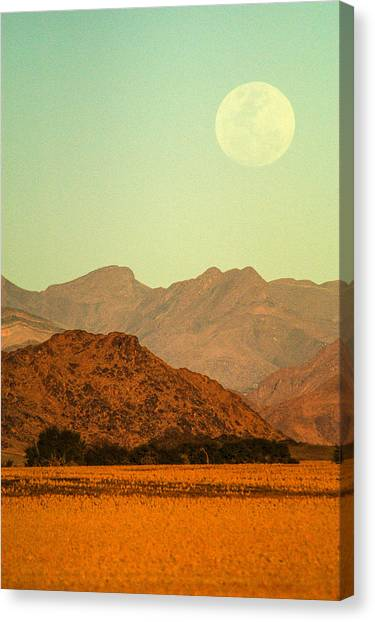 Desert Moonrise Canvas Print
