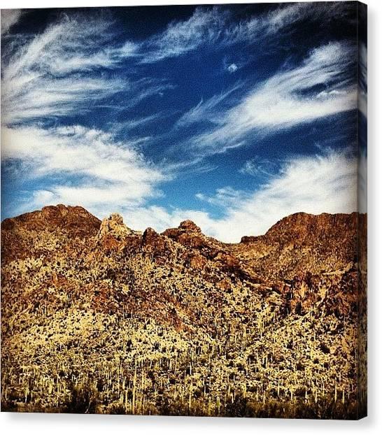 Arizona Canvas Print - #desert #tucson #arizona #roadtrip by Leah Messina