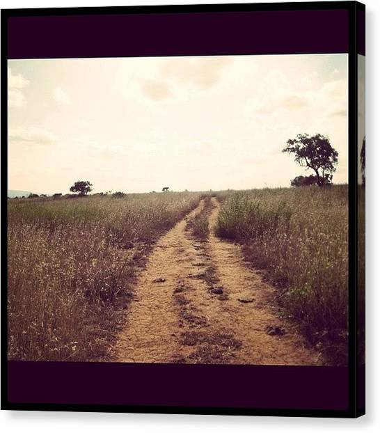 Dirt Road Canvas Print - Deserted Path by Emily Moore