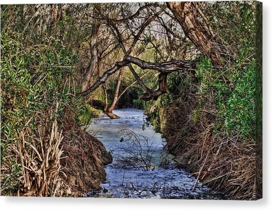 Desolation Creek Hdr Canvas Print