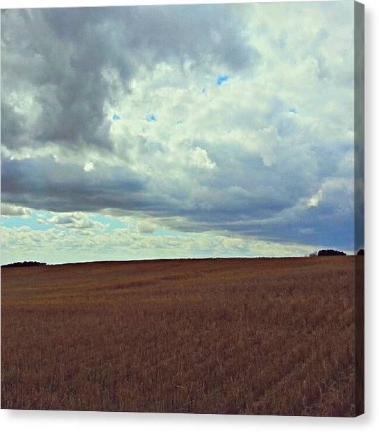 Saskatchewan Canvas Print - Despite What We Hear Day In And Day Out by Michael Squier