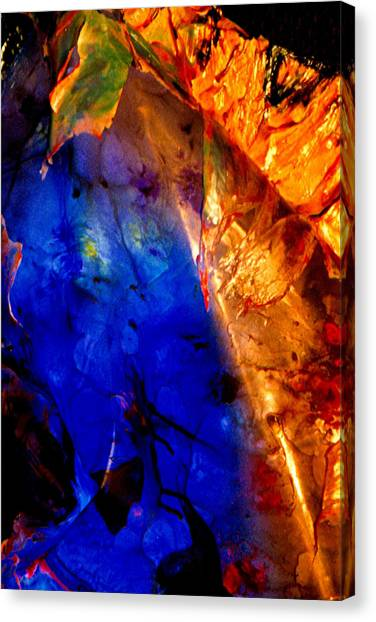 Dichotomy 2 Canvas Print by Colleen Cannon