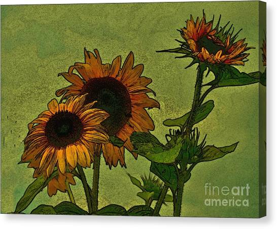 Digital Sunflowers Canvas Print by David  Hubbs