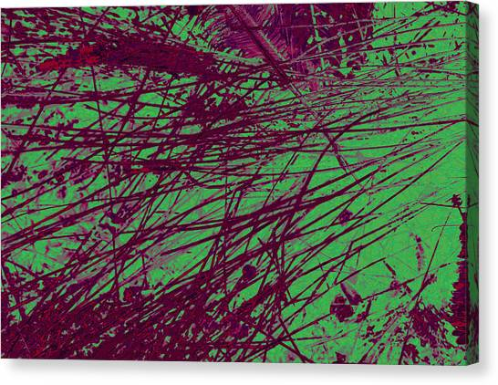 Digitized Nature Canvas Print by Colleen Cannon