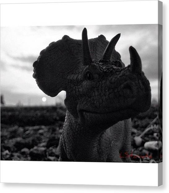 Dinosaurs Canvas Print - #dino Loves A Good #sunset by Lester Starnuto