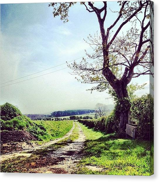 Dirt Road Canvas Print - #dirt #track #farm #road #path #sky by Miss Wilkinson