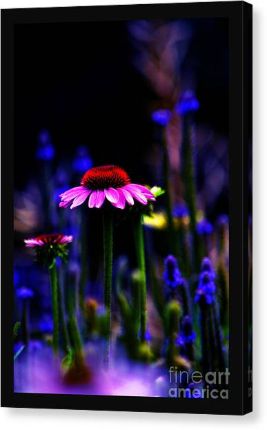 Divine Spirit Of Mother Earth Canvas Print