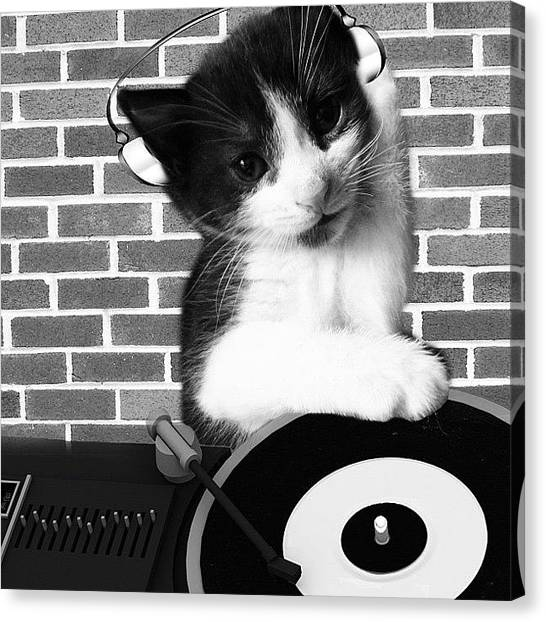 Headphones Canvas Print - Dj Leo Is In The House by Rachel Williams