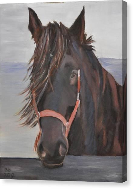 Dobbin The Horse Canvas Print by Barbara Bradbury