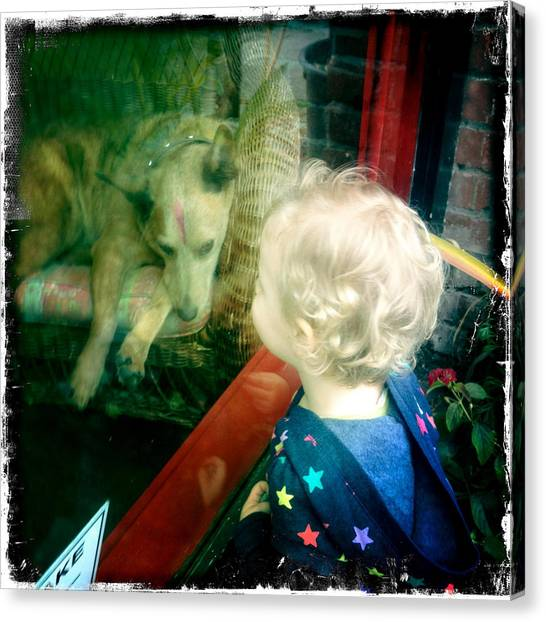 Dog In Window Canvas Print