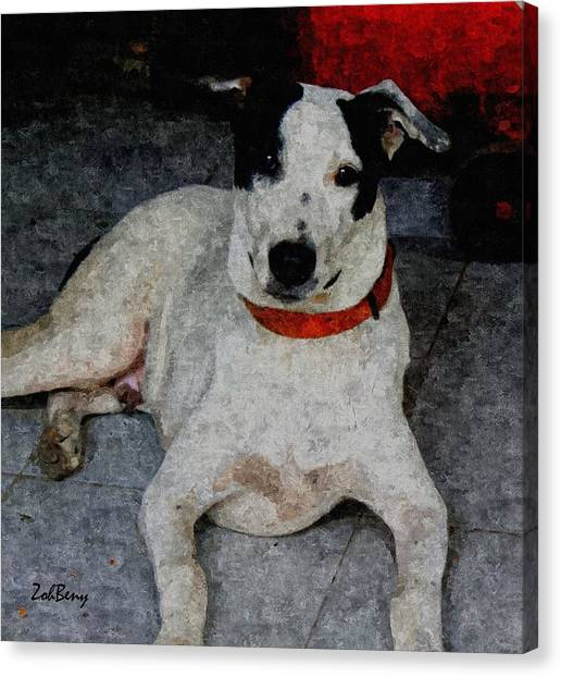 Dog Paintings  Canvas Print by Zoh Beny