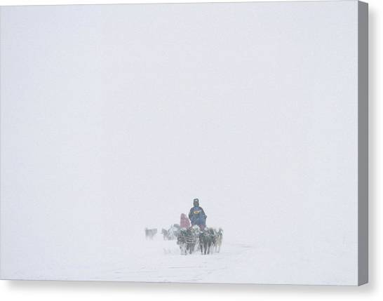 Sleds Canvas Print - Dog Sledding Expedition In Storm by Gordon Wiltsie