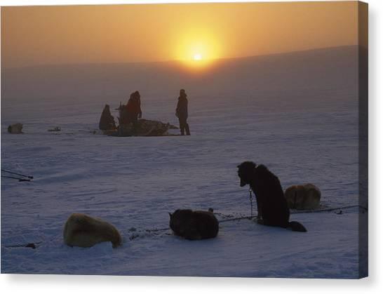 Sleds Canvas Print - Dog Sledding Expedition On Cape by Gordon Wiltsie