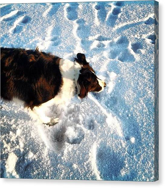 Farmers Canvas Print - #dog #snow #winter #lake #scotland by Dean Ferris
