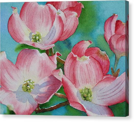 Dogwood Afternoon Canvas Print
