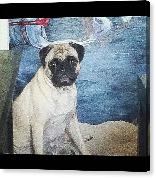 Whales Canvas Print - Don Don Dooonnnnnn.... #pug #creepy by Kaitlyn Geez