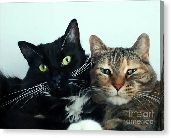 Double Trouble 1 Canvas Print